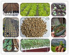 /product-detail/expanded-vermiculite-for-rooting-cuttings-soil-drainage-carnivorous-plants-60564093841.html
