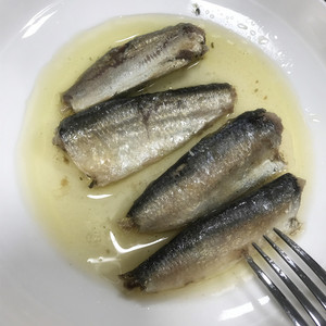 Supply canned sardines products oil