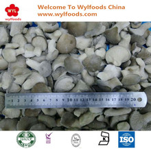 High Quality IQF Frozen Baby Oyster Mushrooms