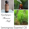 Natural Wholesale Lemongrass Oil Price Lower