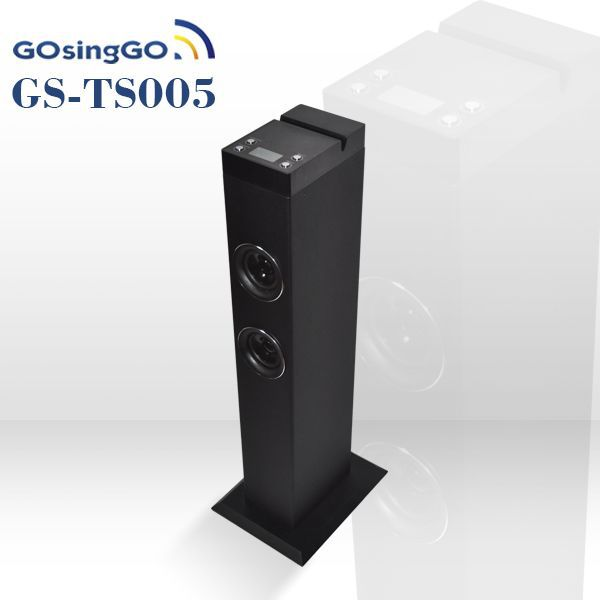 Professional audio/Public Address system/tower speaker