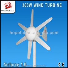 300w Chinese small camping wind generator 300W 6 Blades Horizontal Micro Wind Turbine