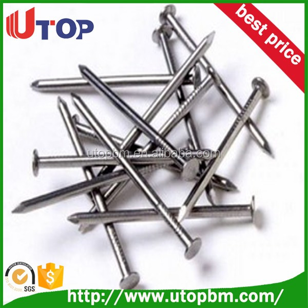 Galvanized Stainless Concrete Steel Nail / polished wire nails
