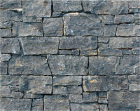 Top Quality Exterior Wall Black Slate Culture Stone