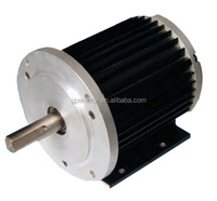 Electric BLDC Brushless DC Motor 48v 1hp 1kw 2kw 3kw 3000w 4kw 4000w 5kw 7kw 8kw 10kw 10000w 15kw 20kw 25kw 30kw 40kw 60kw 100kw