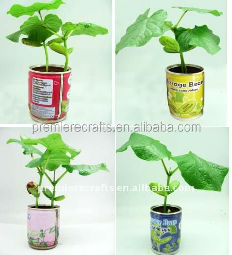 promotion gifts plant metal flower pot small tin flower pots/flower in a can/massage bean with carved words