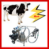 milking equipment manufacturers