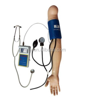 biology human anatomical Human Blood Pressure Training Arm models