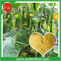 Soluble Fertilizer NPK 12-8-40 Special For Cucumber In Tunnel Or Greenhouse
