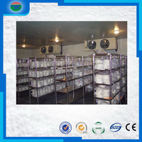 Factory economic potato chips machine cold room freezer