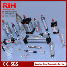 Series Double Acting Pneumatic Door Cylinder