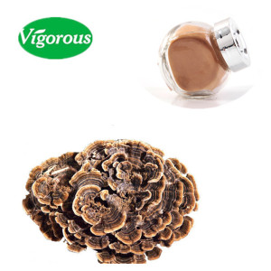 Hot seller Turkey Tail Extract/Pure Yun Zhi Extract/Natural Coriolus Versicolor Extract