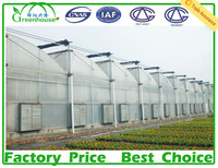 Uv Treated 200 Micron Greenhouse Film Fastening