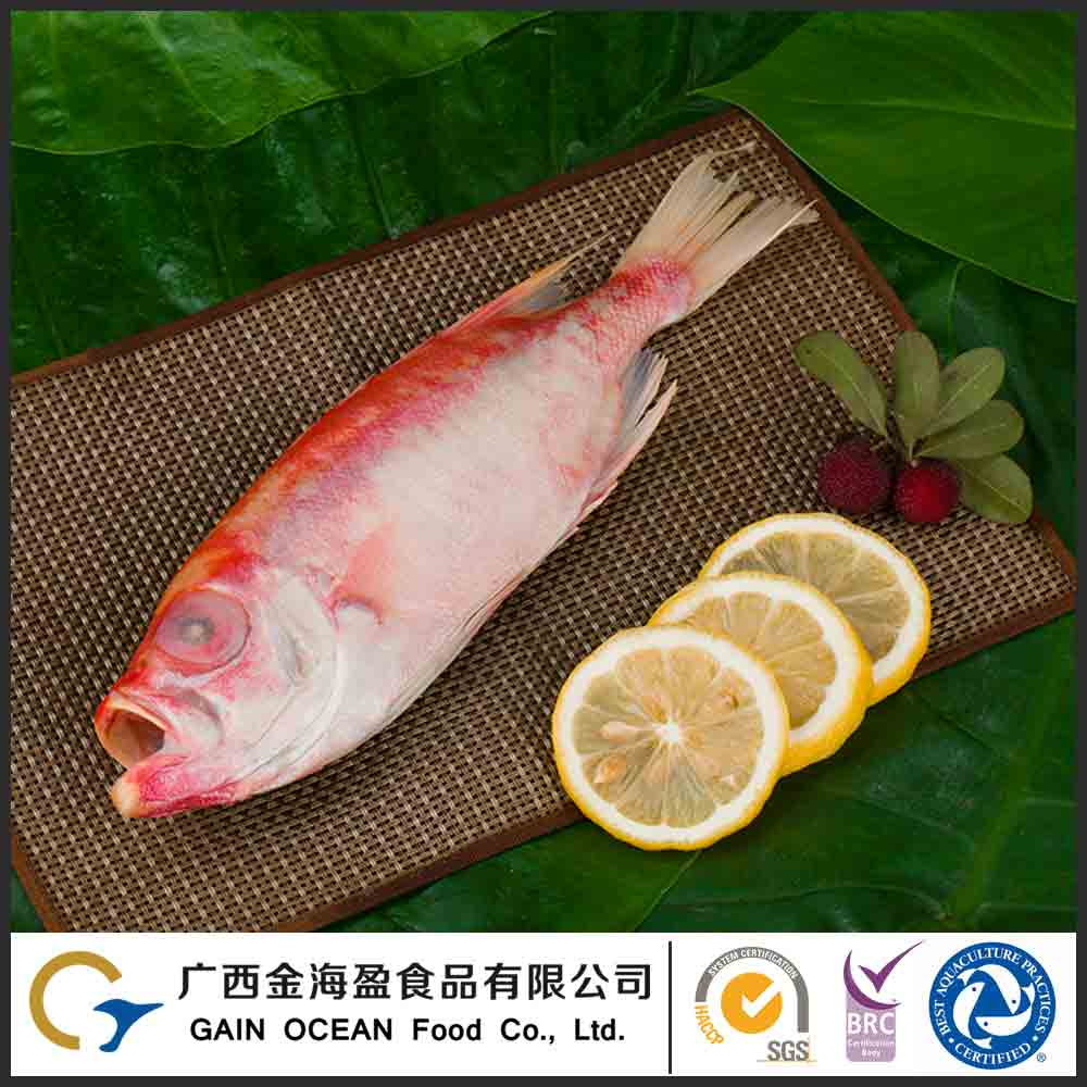 Storage Condition On Or Below -18 Degrees Wholesale Frozen Fish Seafood Prianthus Tayenus
