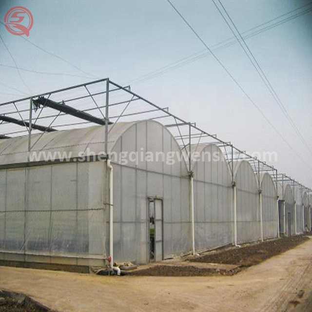 Hot sale modern design agricultural vegetable greenhouse