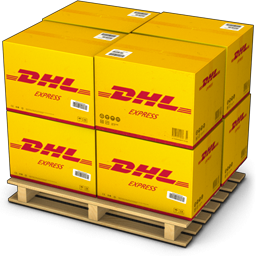 Door to door service DHL express freight forward from china to Indonesia