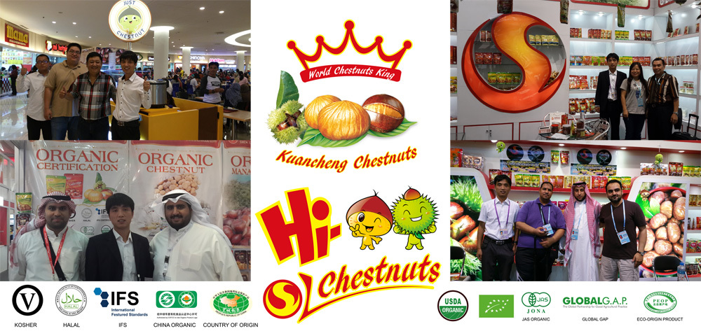 Fresh Chestnut, bulk chestnuts, Hebei raw chestnuts for sale