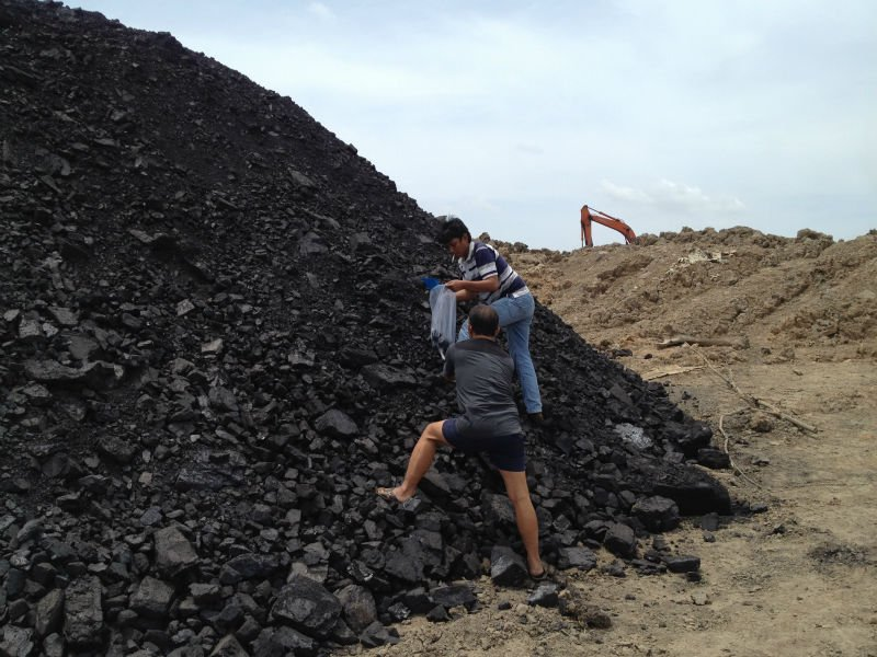 Steam Coal From Indonesia and Palm Kernal Shell