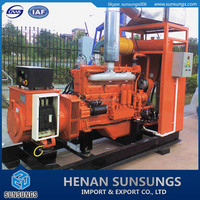 High efficient biogas cogeneration unit