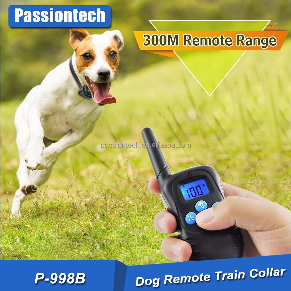 Agility Training Products Training Products Type and Pet Training Products Type For Two Dogs