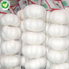 /product-detail/distributor-wholesale-fresh-chinese-4p-pure-white-garlic-60710477547.html