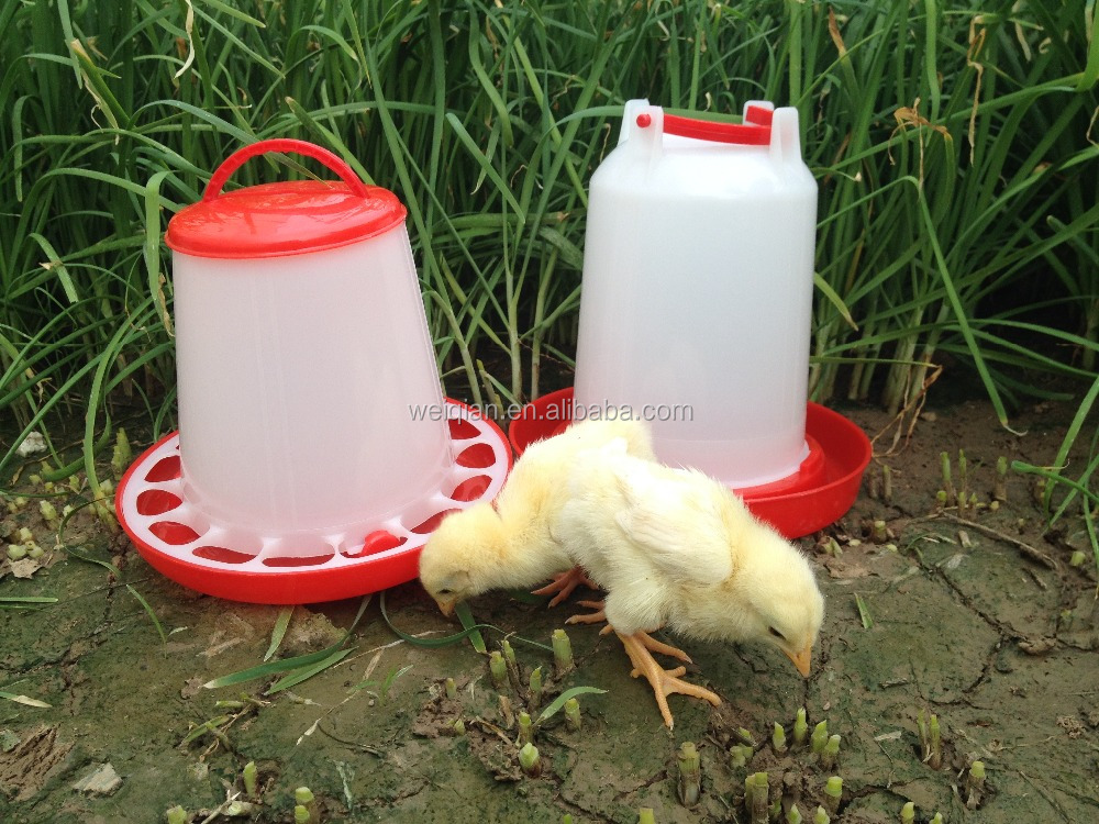WQ high quality chicken feed machine