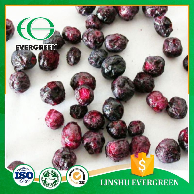 best quality freeze dried fd blueberry fruit