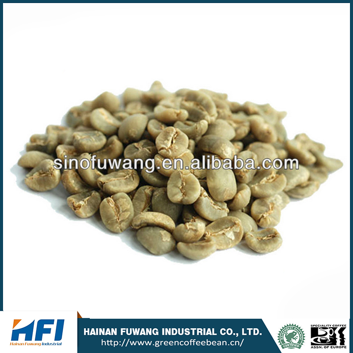 Grade AAA competitive price Organic Arabica Coffee Green Beans