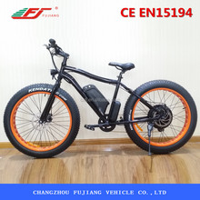fashion electric bike,electric bike kit,electric fat bike