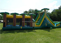 alligator alley Inflatable water slide with slip n slide