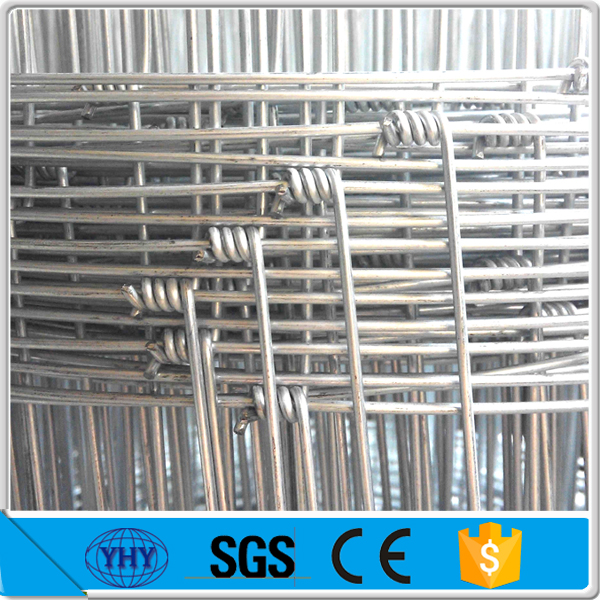 hot dipped galvanized fixed hinge joint wire mesh fence for grassland,sheep,dog and horse