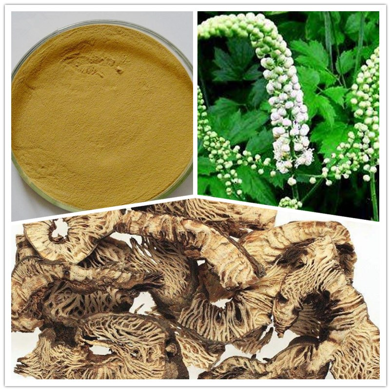 Relieve Menopause Symptoms 2.5% Triterpenoid Saponins Black Cohosh Extract