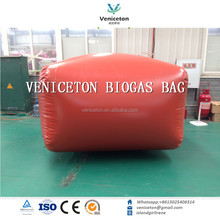 Veniceton system family use small biogas plant for multi international