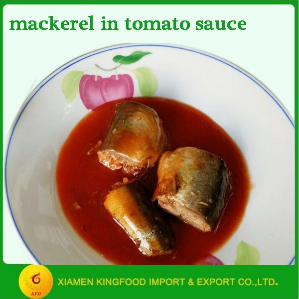 canned mackerel in chili tomato sauce
