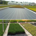 Agricultural Plastic PP ground cover Anti grass cloth Weed Mat 100gsm