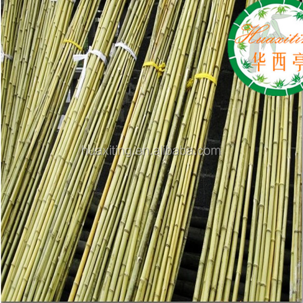 Green color bamboo poles building