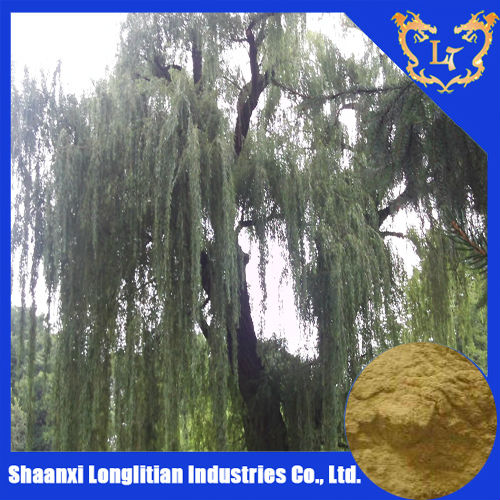 natural White willow bark extract