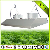 top quality fruit yielding plants 800 watt induction grow light