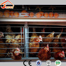 Vertical H type chicken layer house / poultry battery cage / poultry feeders and drinkers