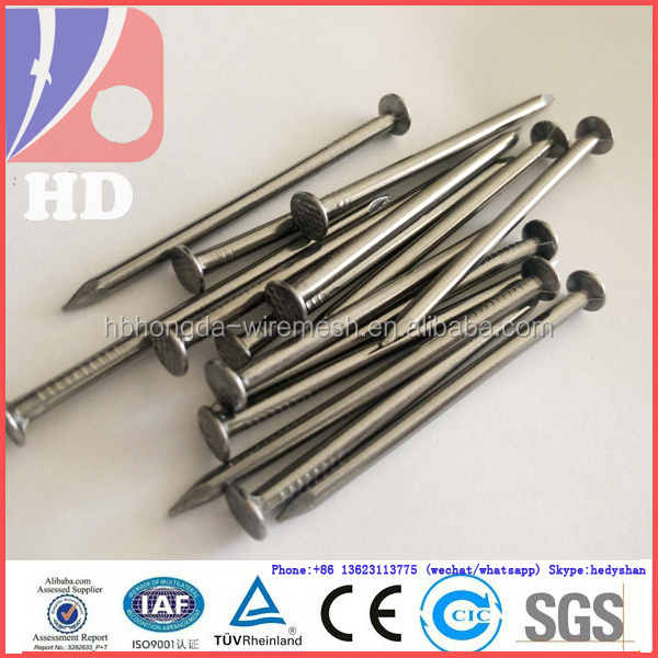 Common iron nails / round head common nails China supplier