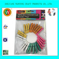 25PK Mini Coloured Craft Wooden Pegs