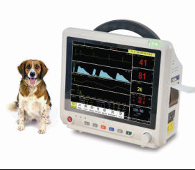 Veterinary Medical Equipment: Patient Monitor from China Factory