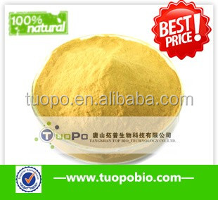 large manufacturer of NON GMO 100% natural low price bulk yeast extract powder