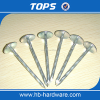Good Quality Head Polishing Galvanized Umbrella