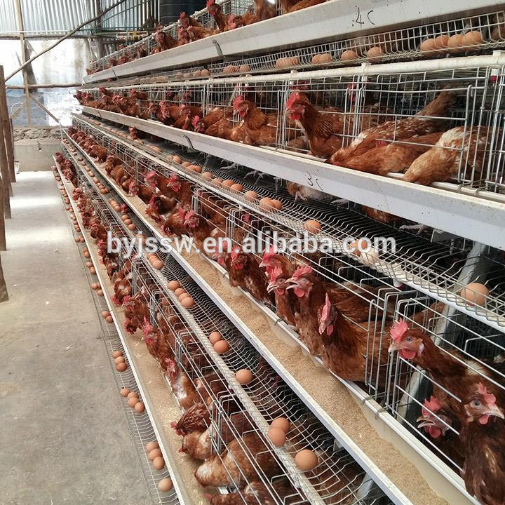 Poultry layer battery chicken cage for Nigeria Kenya South Africa Tanzania Uganda farm(Whatsapp: +86 13331359638)
