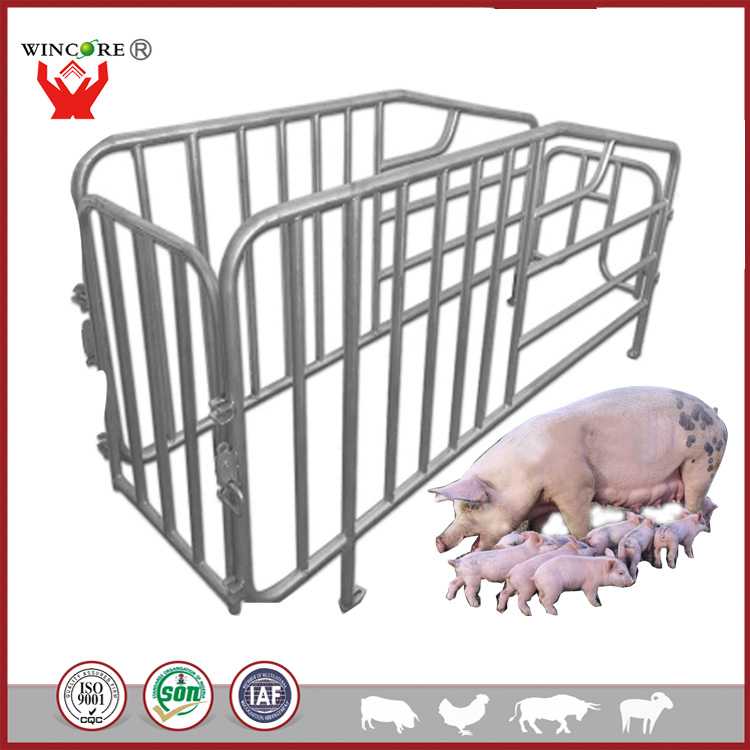 High quality hot dip galvanized endurable pig cages gestation stall