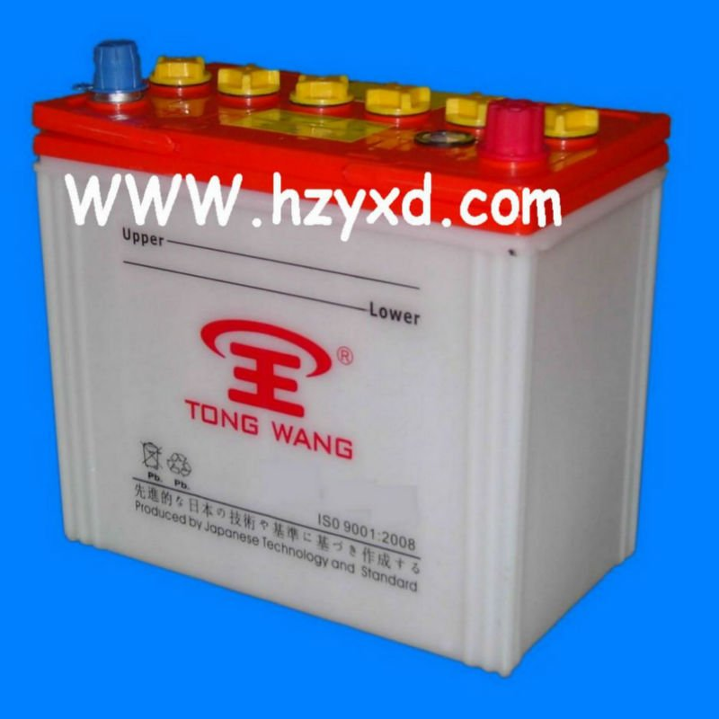 12V Car Dry Cell Battery