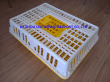 heavy duty plastic crate cage box for poultry chicken transportation