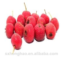 Good Quality hawthorn berry powder extract