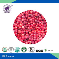 IQF Cranberry frozen fruit